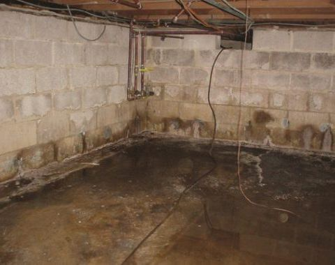 How To Fix A Wet Basement Family, Will Insurance Cover Leaking Basement